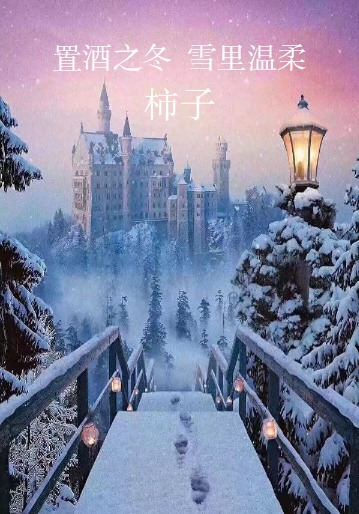 置酒之冬  雪里温柔封面