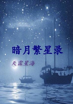 暗月繁星录封面